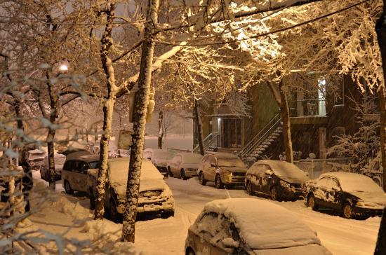Снег в Монреале 24 февраля 2012 - 1