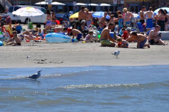 Wasaga Beach 20120806 - 17