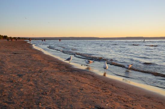 Wasaga Beach 20120806 - 48