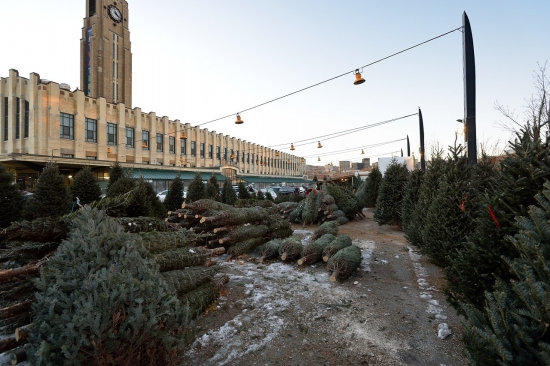 Montreal, Atwater Market and Canal Lachine, Dec 15, 2012 - 15