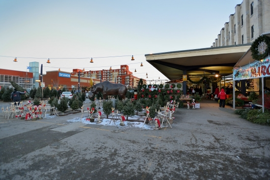 Montreal, Atwater Market and Canal Lachine, Dec 15, 2012 - 25