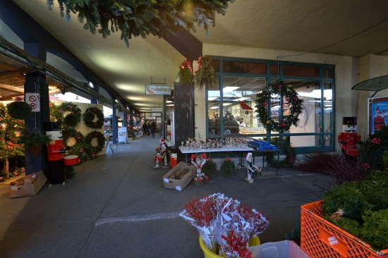 Montreal, Atwater Market and Canal Lachine, Dec 15, 2012 - 26