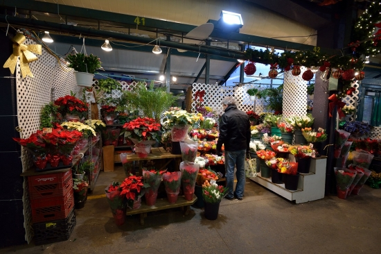 Montreal, Atwater Market and Canal Lachine, Dec 15, 2012 - 37
