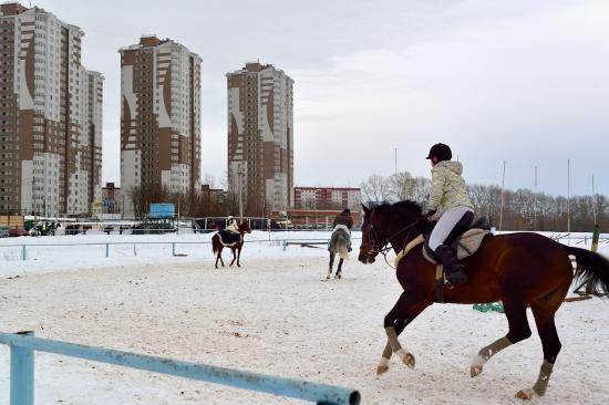 Пермь, ипподром 2013-03-16