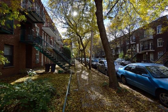 Улица Coleraine, Montreal
