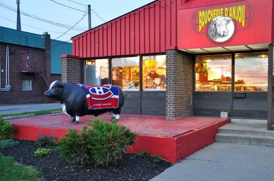 Корова болеет за  Canadiens