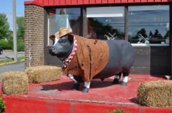 Корова в Chateauguay - 20100611-1