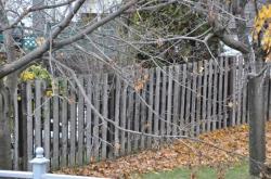 Забор - 1