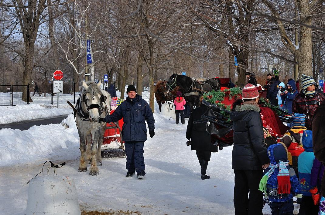 Fête des neiges de Montréal au Parc Jean-Drapeau, Snow Village 2013-01-20 - 66