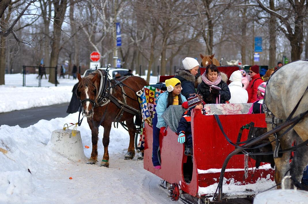 Fête des neiges de Montréal au Parc Jean-Drapeau, Snow Village 2013-01-20 - 67