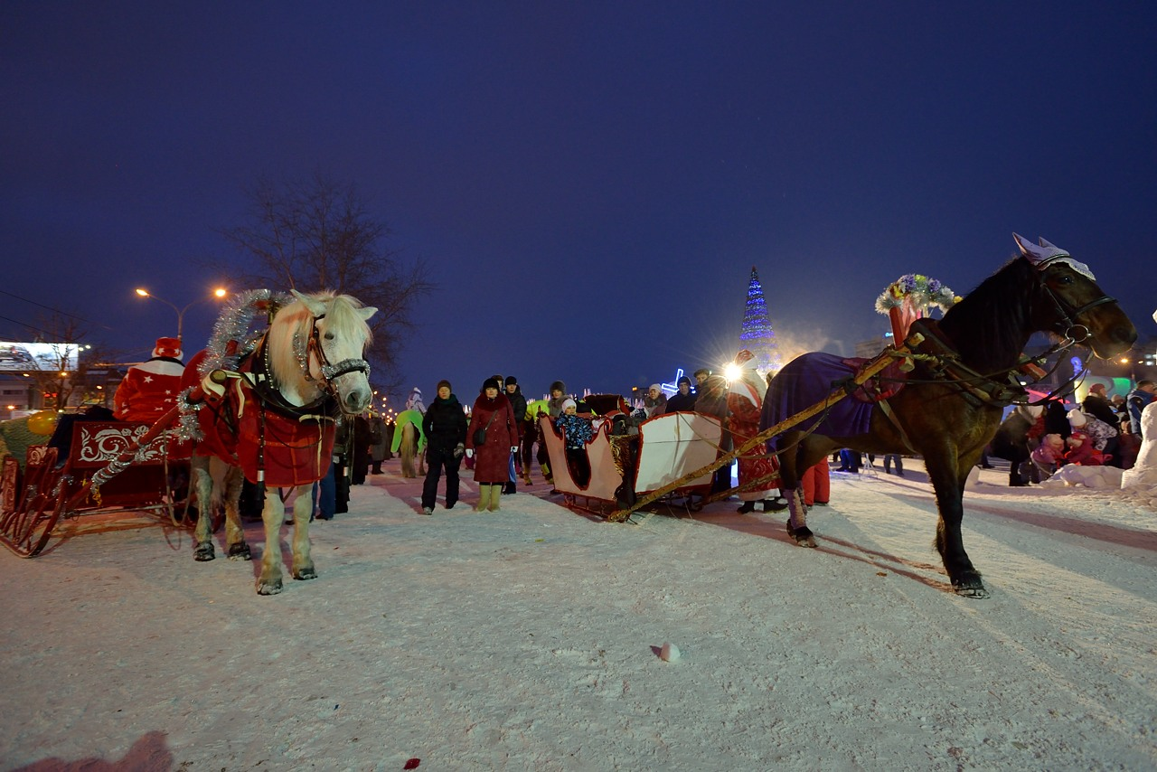 Ледовый городок в Перми, январь 2013 - 24