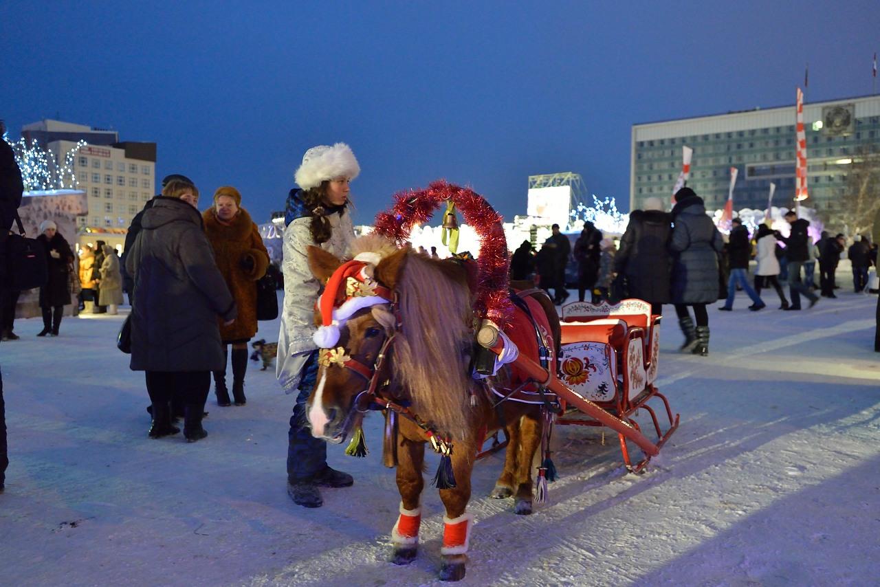 Ледовый городок в Перми, январь 2013 - 26