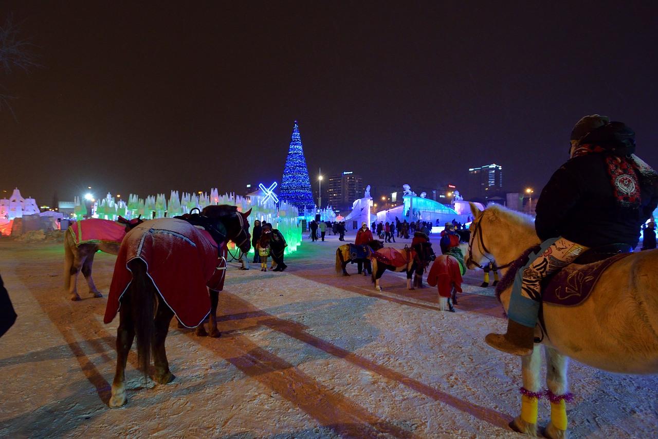 Ледовый городок в Перми, январь 2013 - 36