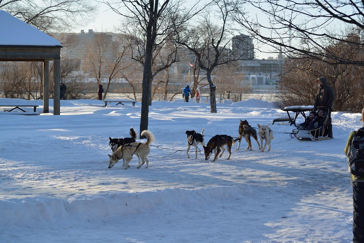 Parc Jean Drapeau Jan 27, 2013 - 50